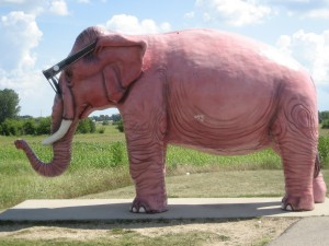 Pink elephant statue in Elgin, IN