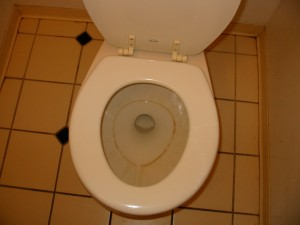 Our new toilet