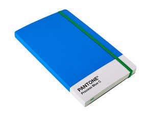pantone notebook where I keep my ideas about my short stories
